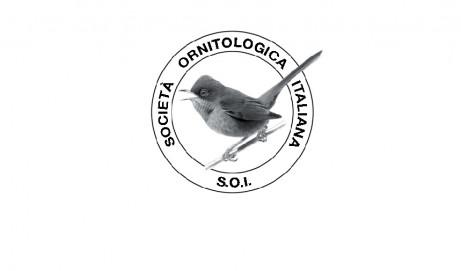 """Società Ornitologica Italiana: uscito il nuovo n° de """"Gli Uccelli d'Italia"""" (41 – 2016)"""